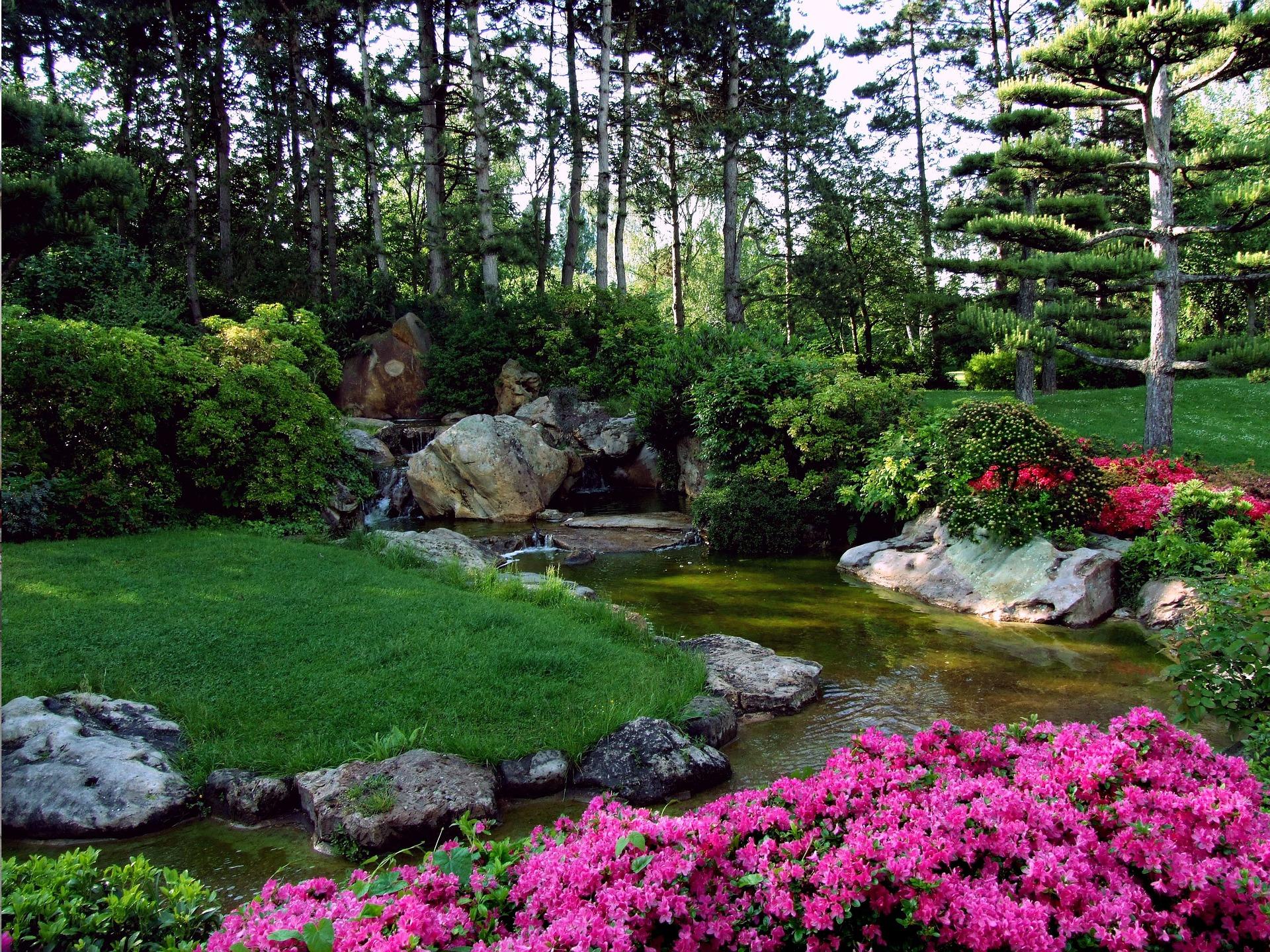 Conoces el t verde kukicha historia propiedades y for Jardin japones piscina