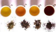 reinfusionar el te